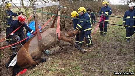 This kind of work is also part of the job of a firefighter (c) BBC News